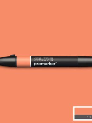 marker-dvuhstoroniy-promarker-w&n-persik